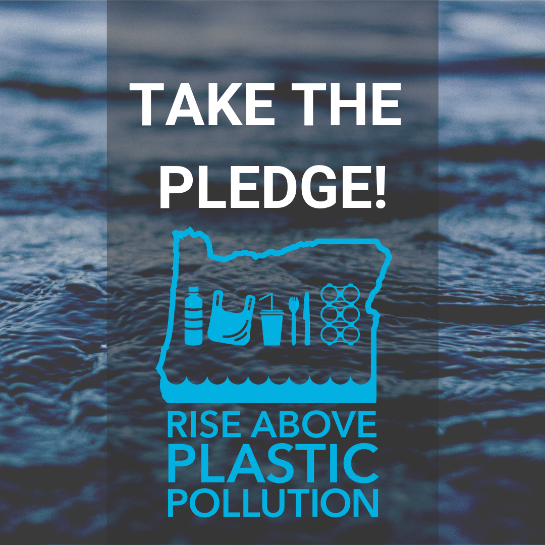 Take the Pledge - Surfrider